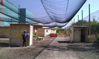 Paintball-Pilot: Spielfeld-Details: Krems: Paintballplatz